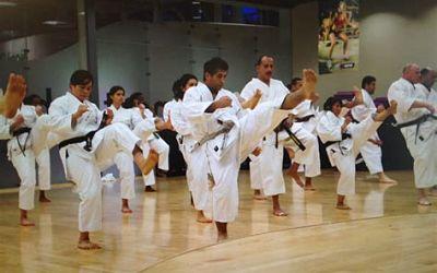 karate class image kicking drill